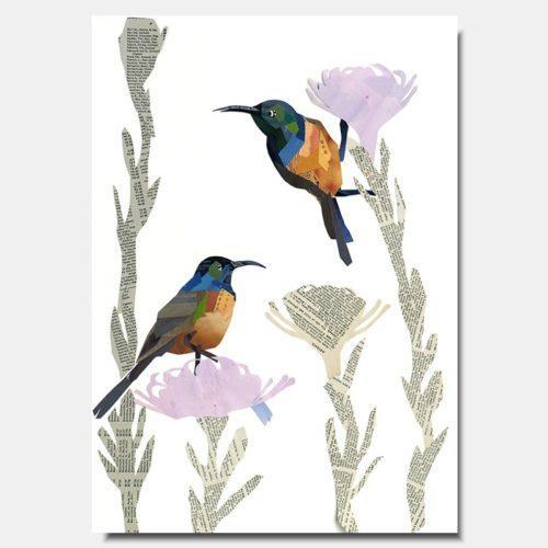 Sunbird Collage Prints by artist Zoe Mafham